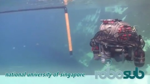 robosub